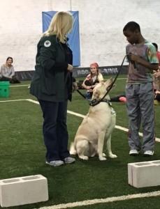 Veteran's Day Dog Training