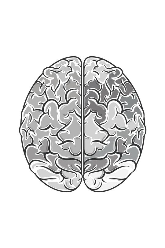 Brain 5.