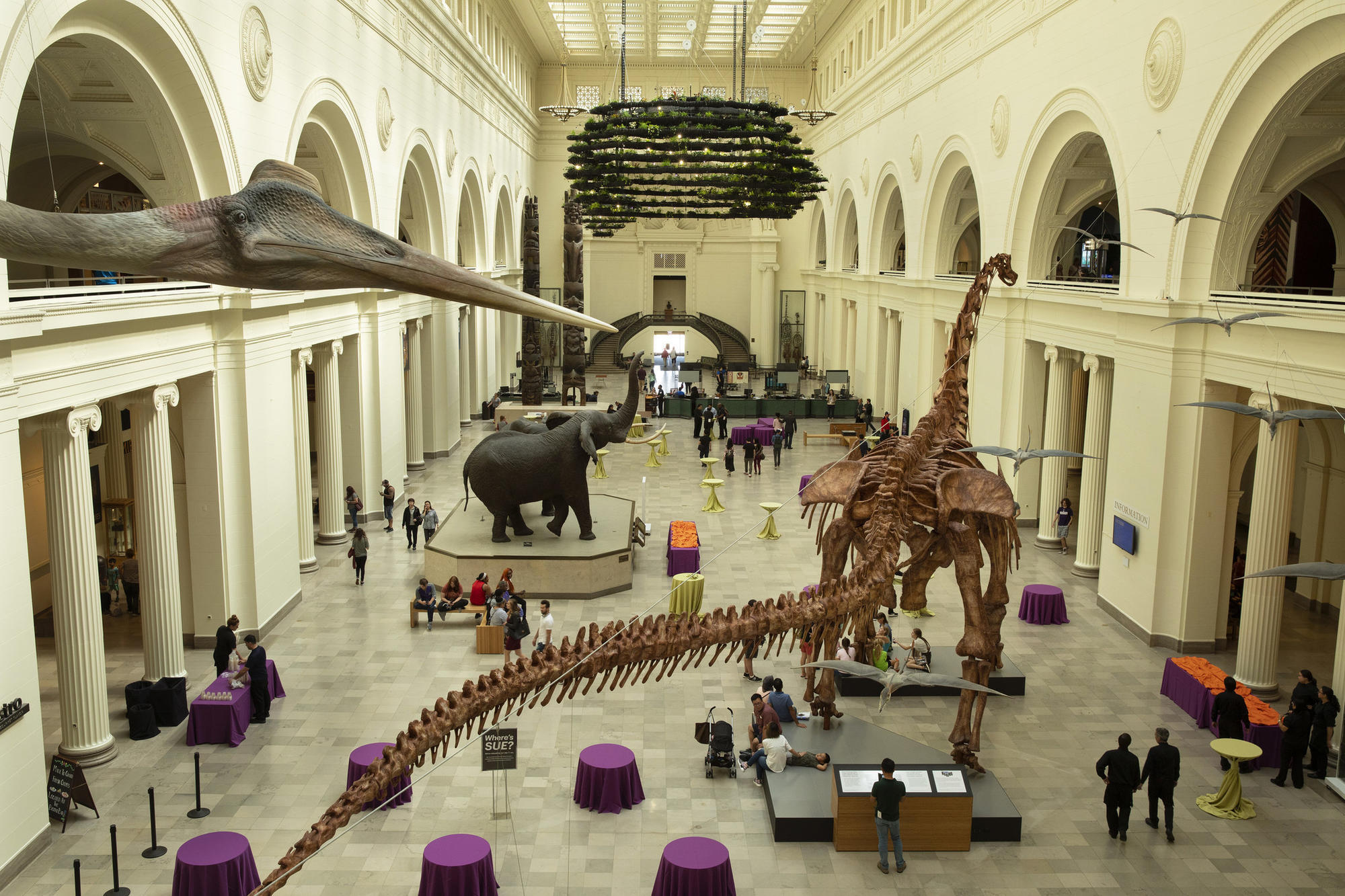 Interior of the Field Museum
